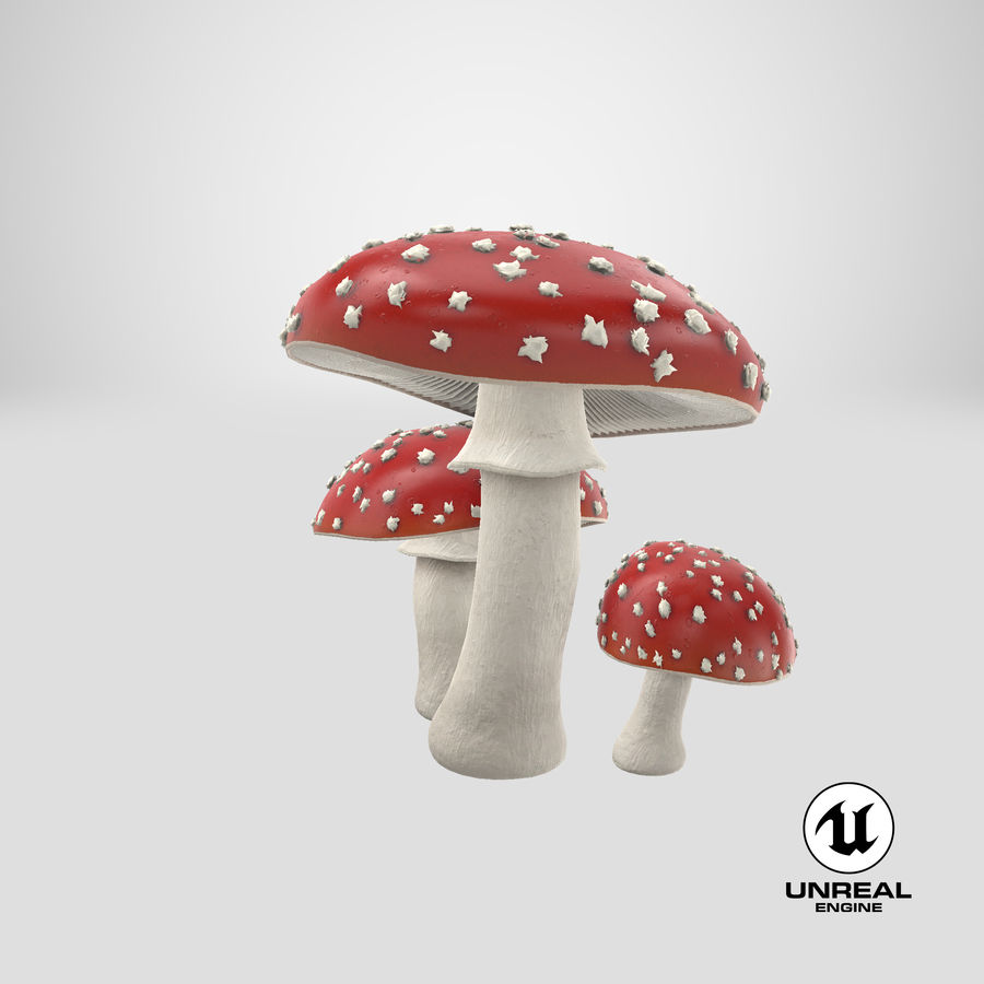 Amanita Mushrooms royalty-free 3d model - Preview no. 38