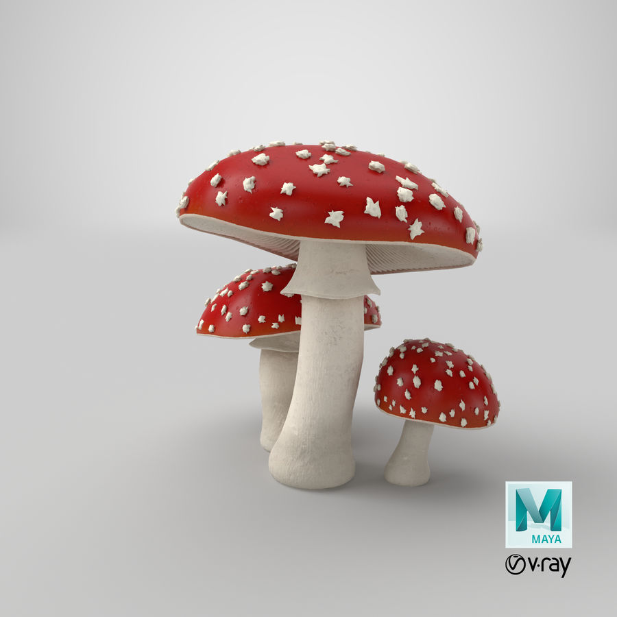 Amanita Mushrooms royalty-free 3d model - Preview no. 30
