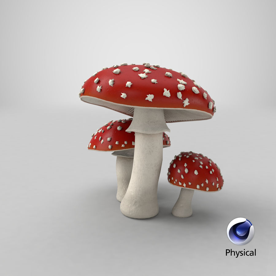 Amanita Mushrooms royalty-free 3d model - Preview no. 42