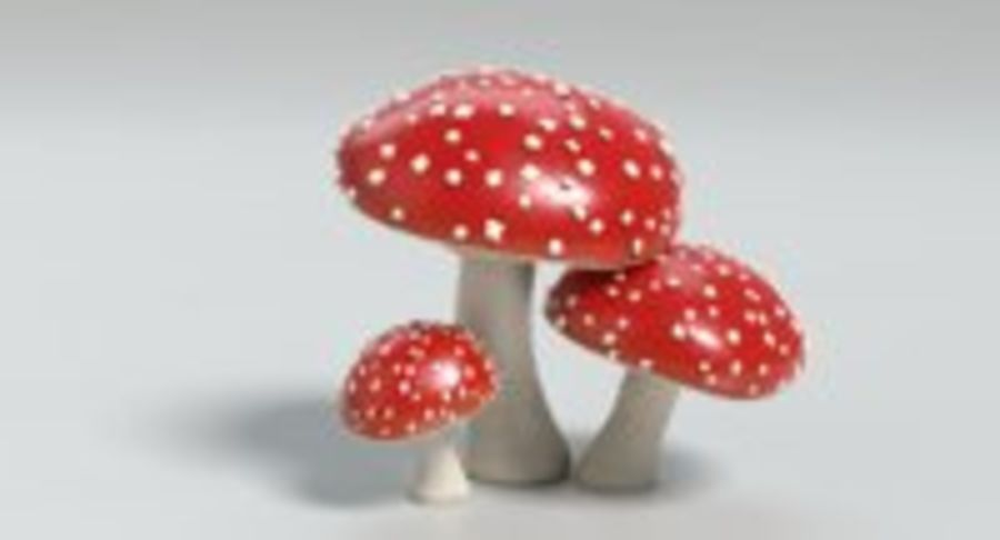 Amanita Mushrooms royalty-free 3d model - Preview no. 15