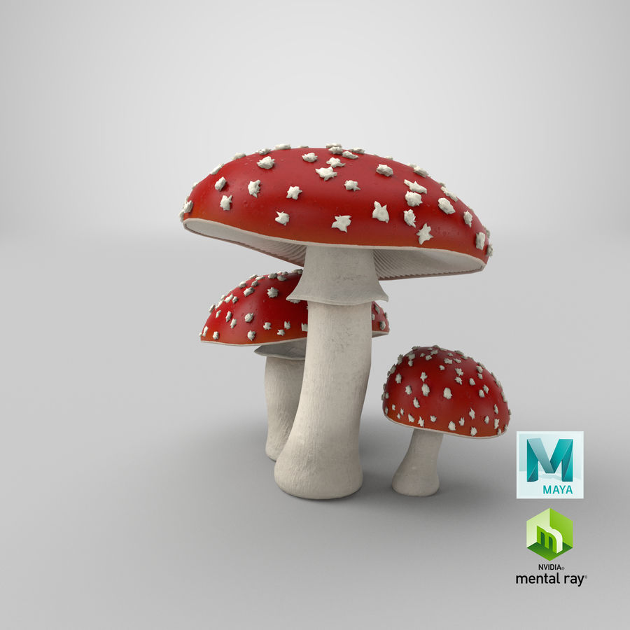 Amanita Mushrooms royalty-free 3d model - Preview no. 32
