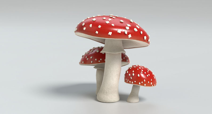 Amanita Mushrooms royalty-free 3d model - Preview no. 19