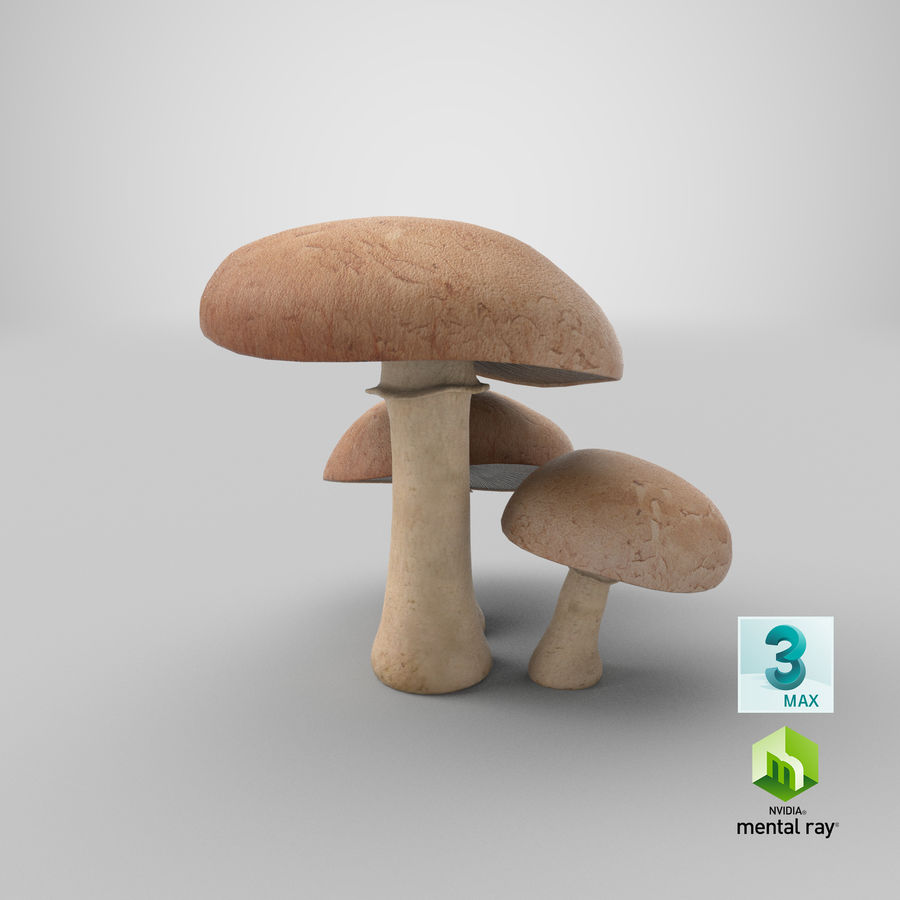 Portobello-Pilze royalty-free 3d model - Preview no. 19