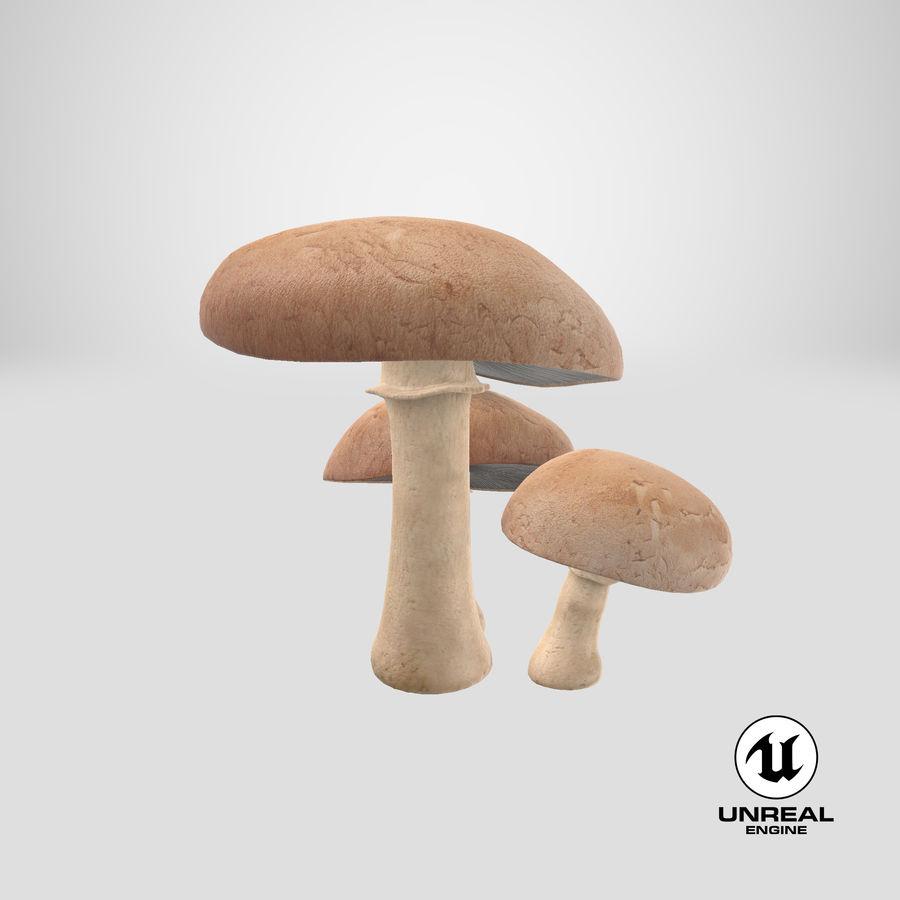 Portobello mantarları royalty-free 3d model - Preview no. 20