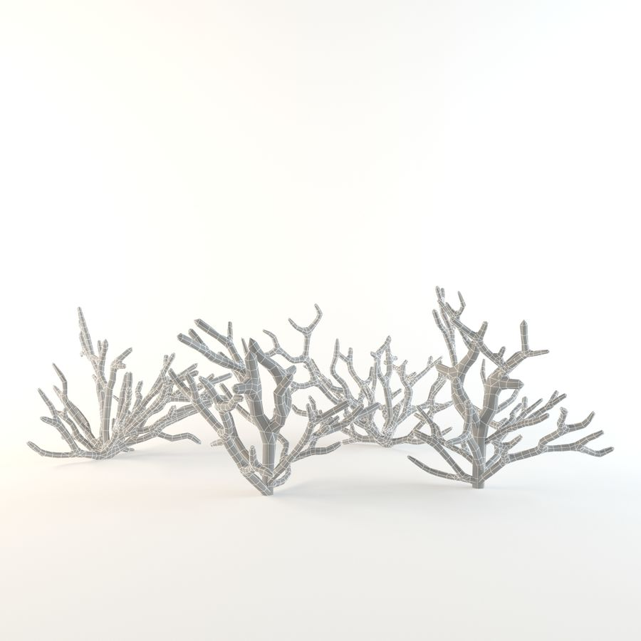 corail royalty-free 3d model - Preview no. 5