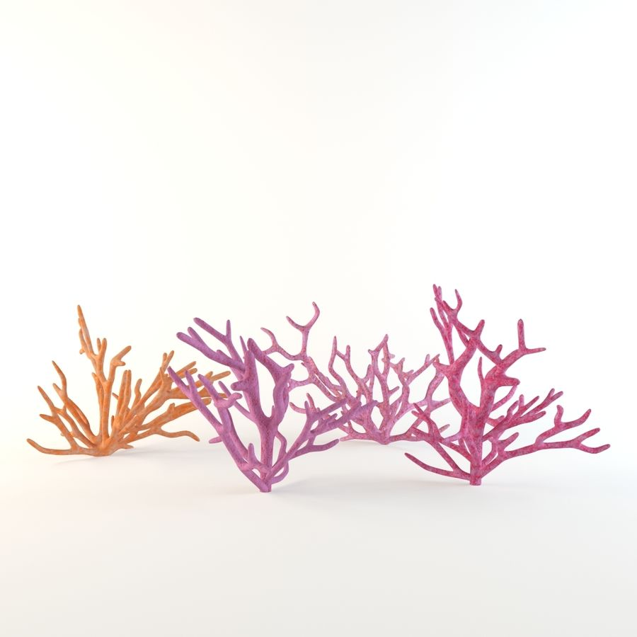 corail royalty-free 3d model - Preview no. 2
