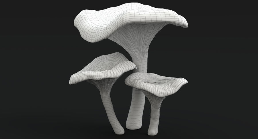 Champignons Chanterelle royalty-free 3d model - Preview no. 25