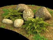 juniperus pfitzeriana aurea juniper 3d model