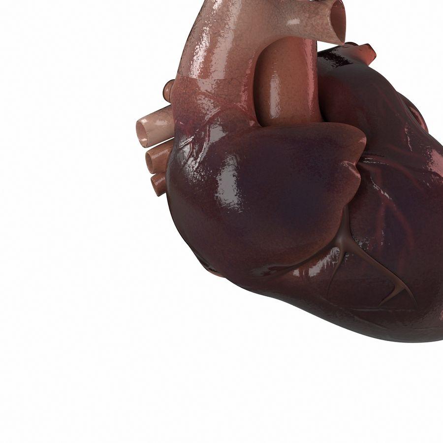 Ludzkie serce royalty-free 3d model - Preview no. 5