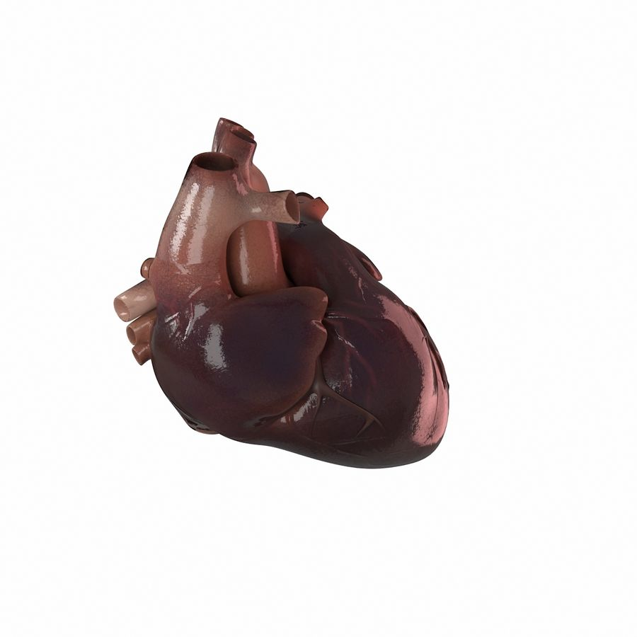 Ludzkie serce royalty-free 3d model - Preview no. 2