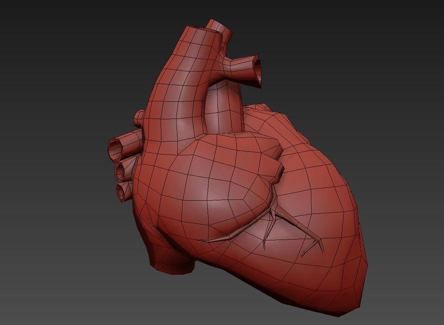Human Heart royalty-free 3d model - Preview no. 10