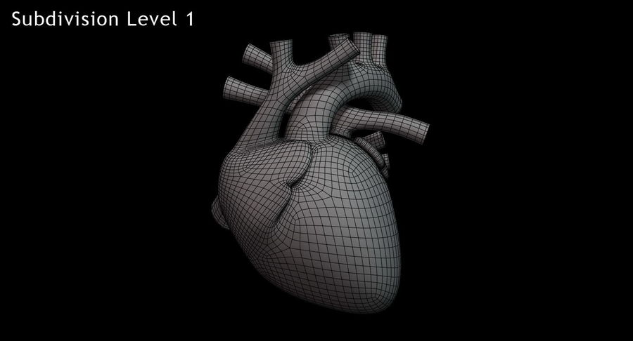 Human Heart Rigged royalty-free 3d model - Preview no. 14