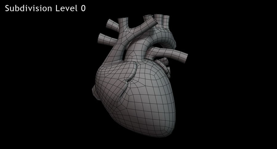 Human Heart Rigged royalty-free 3d model - Preview no. 13