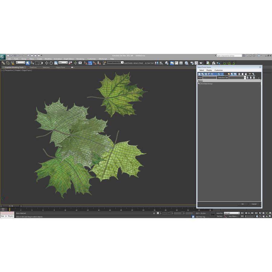 Foglie di acero verde royalty-free 3d model - Preview no. 30