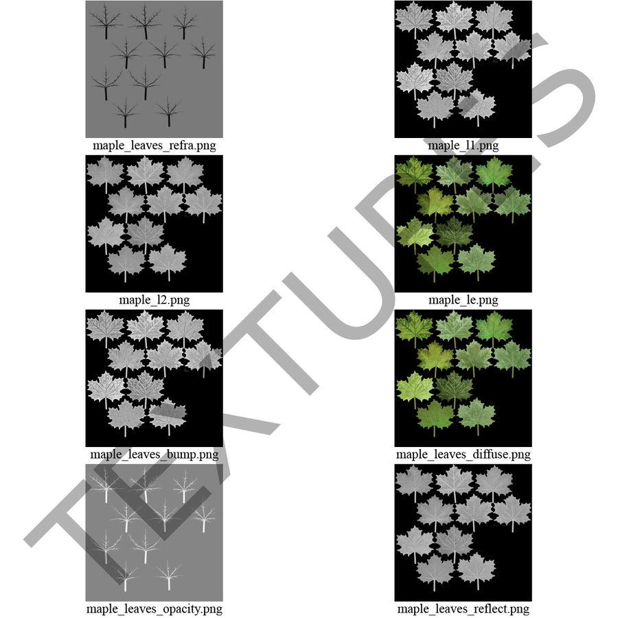 Foglie di acero verde royalty-free 3d model - Preview no. 29