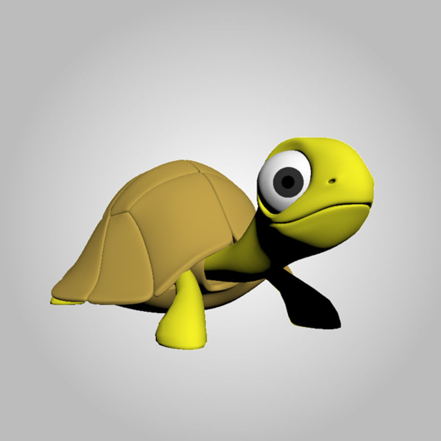 Turtle royalty-free 3d model - Preview no. 7