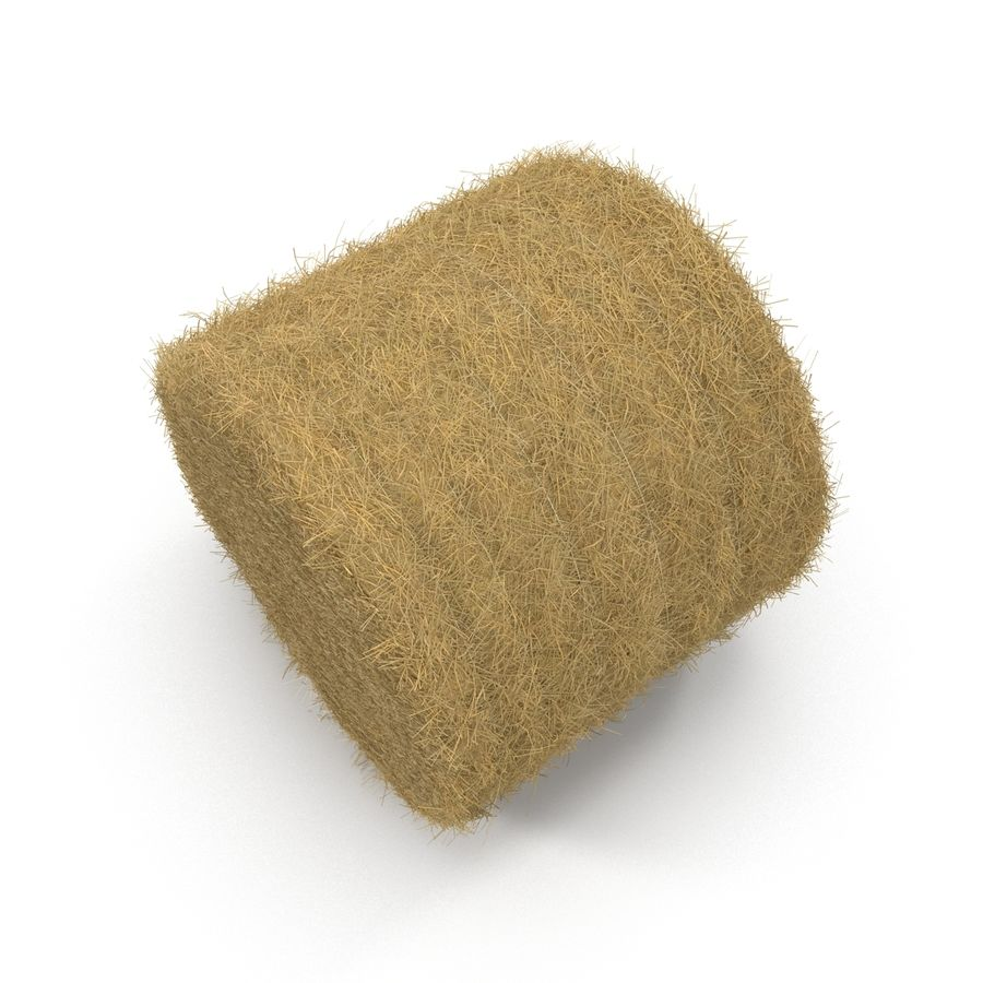 Hay Roll royalty-free 3d model - Preview no. 8