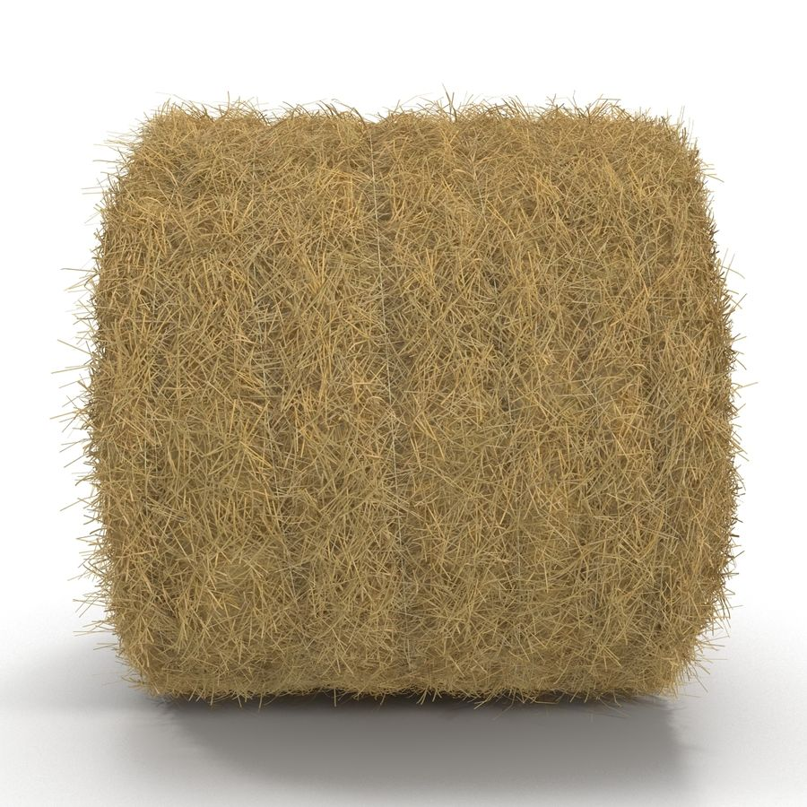 Hay Roll royalty-free 3d model - Preview no. 6