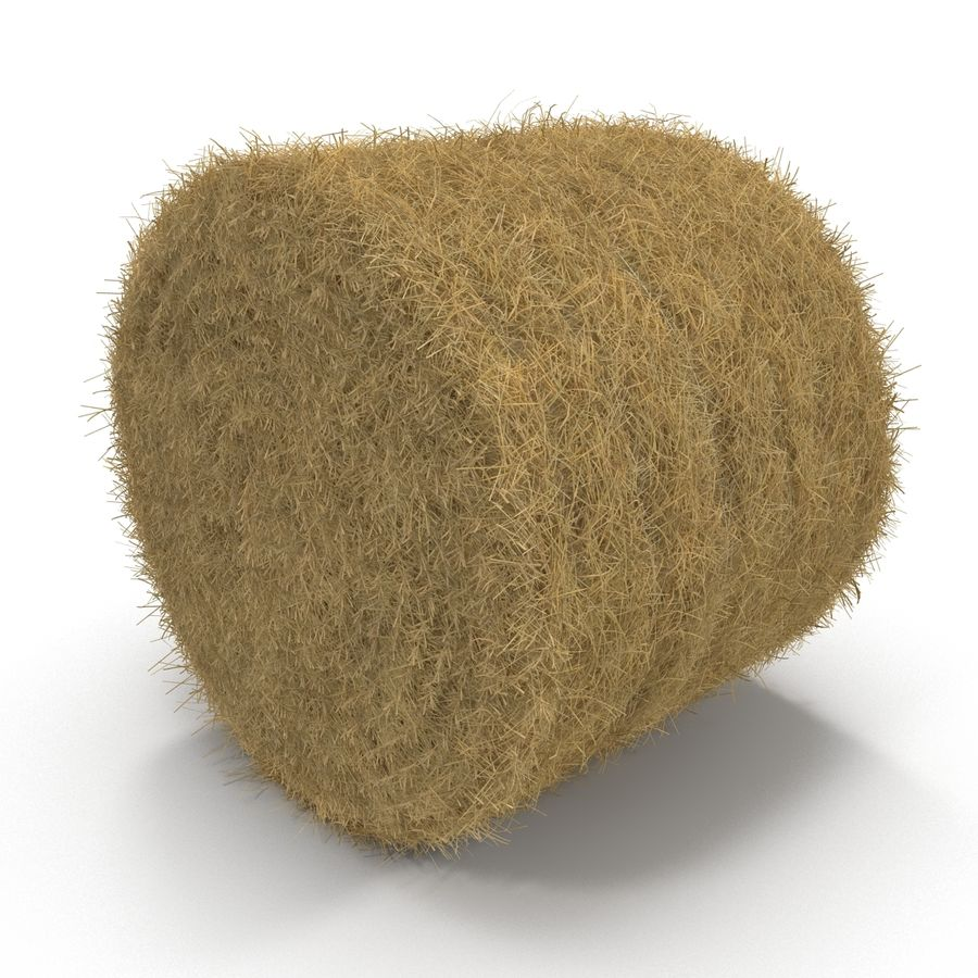 Hay Roll royalty-free 3d model - Preview no. 3