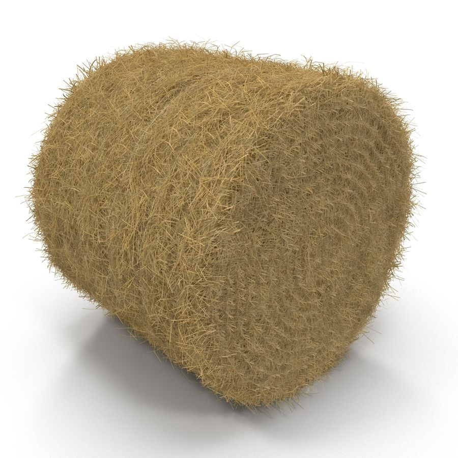 Hay Roll royalty-free 3d model - Preview no. 4