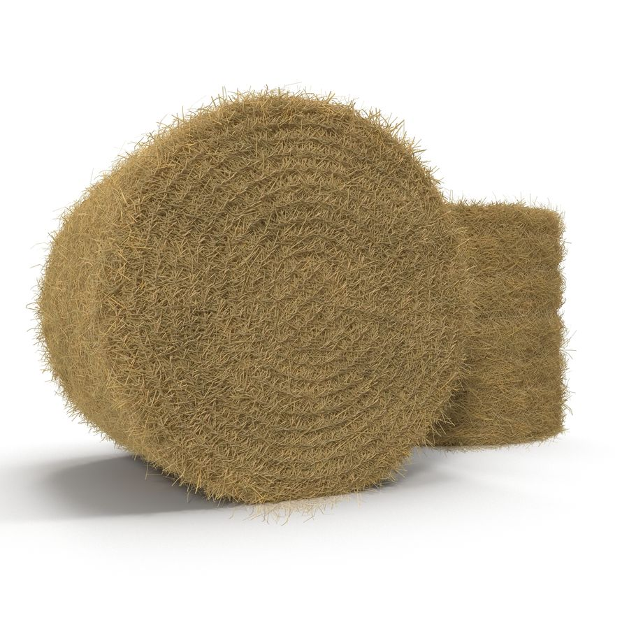 Hay Roll royalty-free 3d model - Preview no. 2