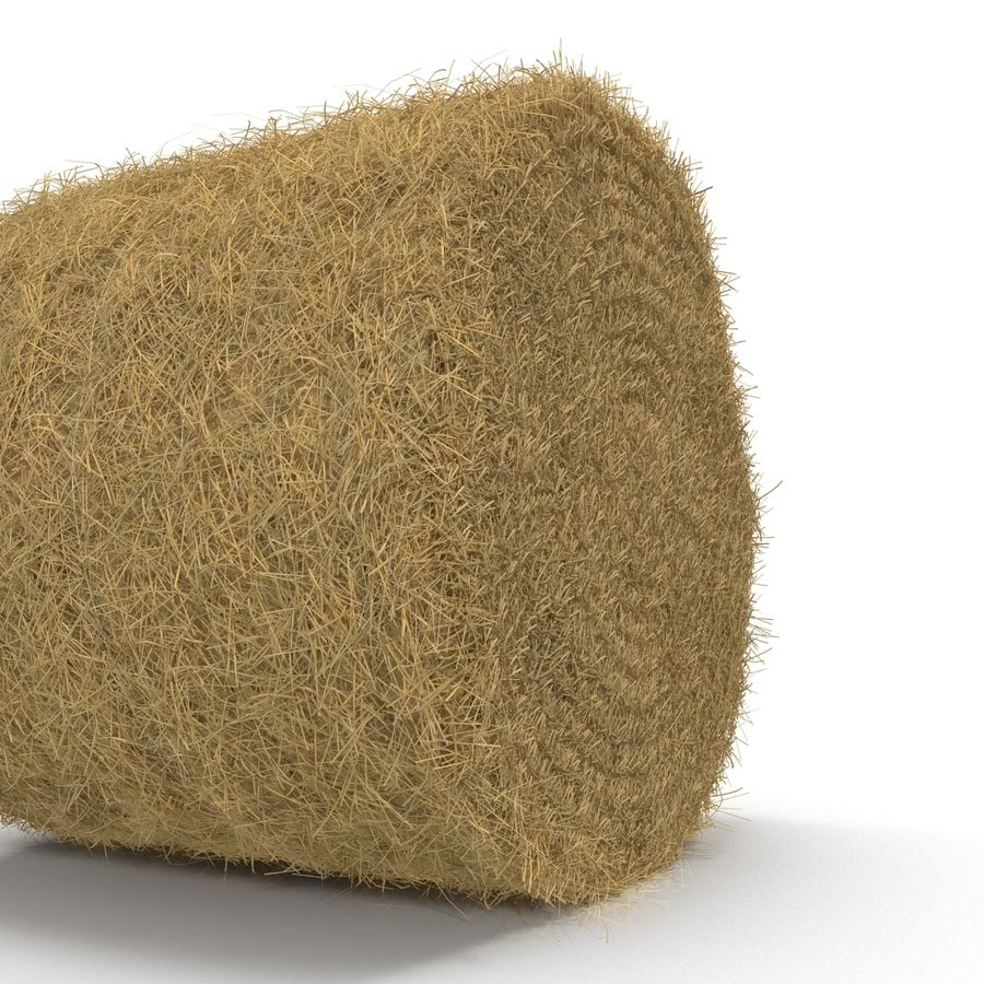 Hay Roll royalty-free 3d model - Preview no. 10