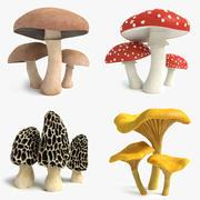 Ensemble de champignons 3d model