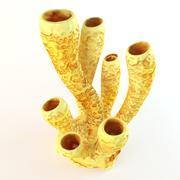 Tubo di corallo giallo 3d model