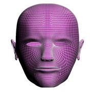 Struttura del viso uomo 3d model