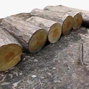 Ağaç günlüğü 3 - Günlükler 3d model