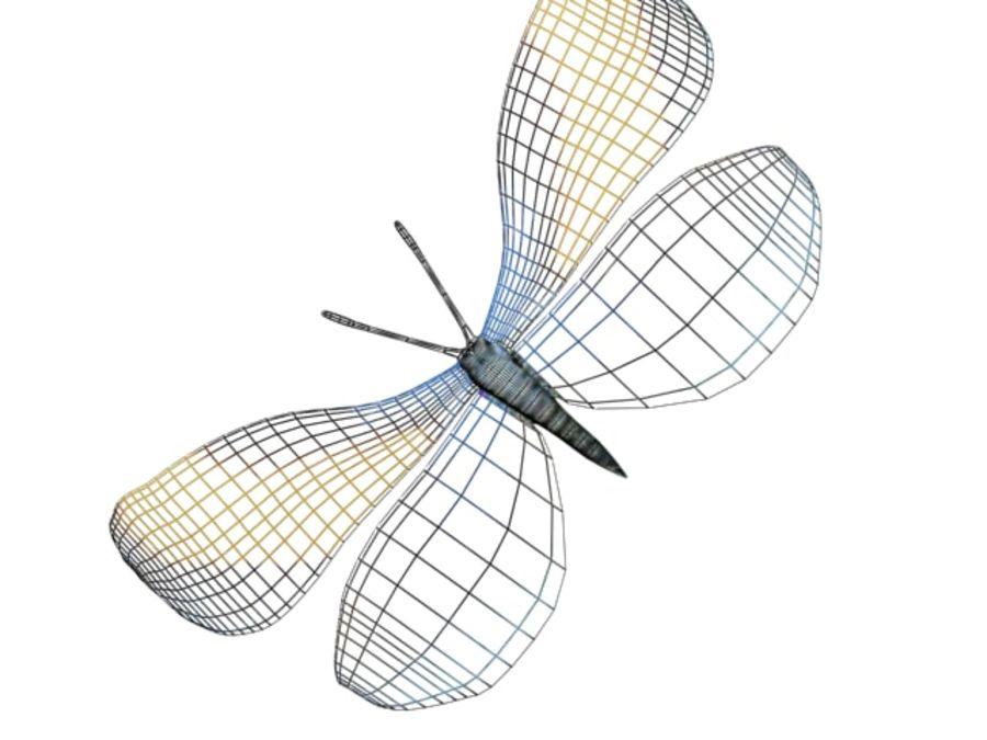 mariposa royalty-free modelo 3d - Preview no. 7