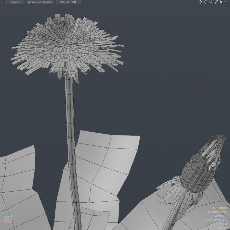 одуванчик royalty-free 3d model - Preview no. 4