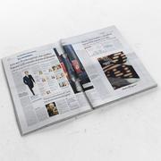 La Repubblica otwarta 3d model