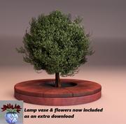 小绿叶树和木甲板播种机 3d model
