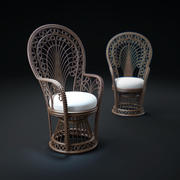Peacock-Rattan-Fabric-Fauteuil 3d model