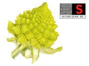 Romanesco broccoli cauliflower 8K 3d model
