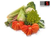 Gemüse Grünzeug 8K 3d model