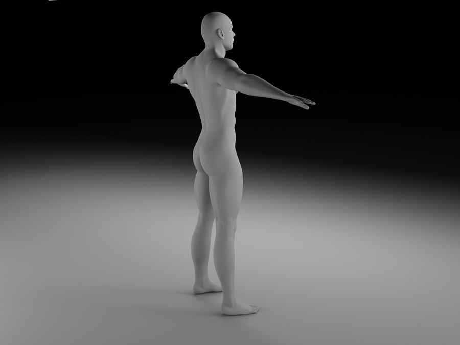Man body royalty-free 3d model - Preview no. 4