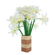 цветы 3d model