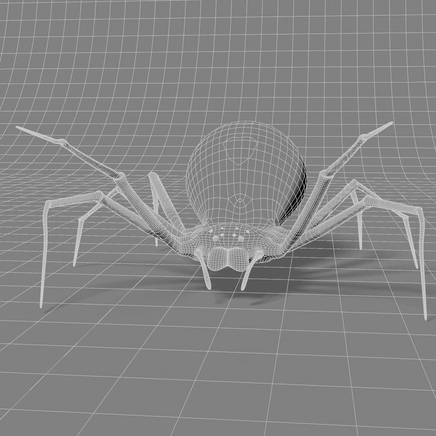 Black Widow royalty-free 3d model - Preview no. 3