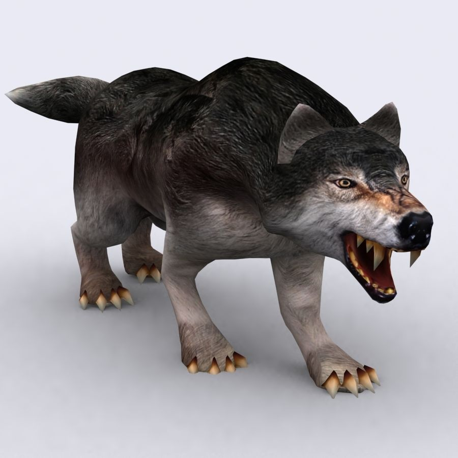 3DRT - Fantasy Animal - Wolf royalty-free 3d model - Preview no. 5