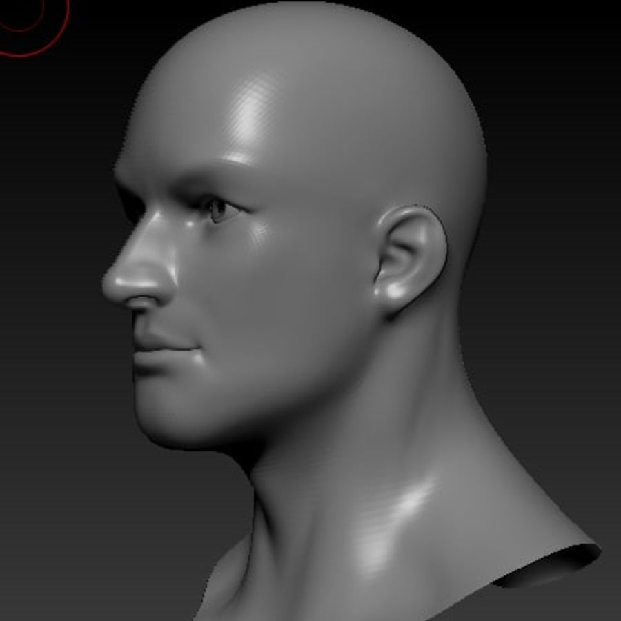 Male Head Bust royalty-free 3d model - Preview no. 2