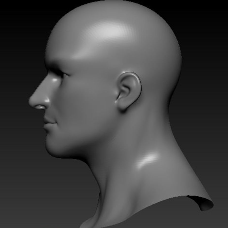 Male Head Bust royalty-free 3d model - Preview no. 3