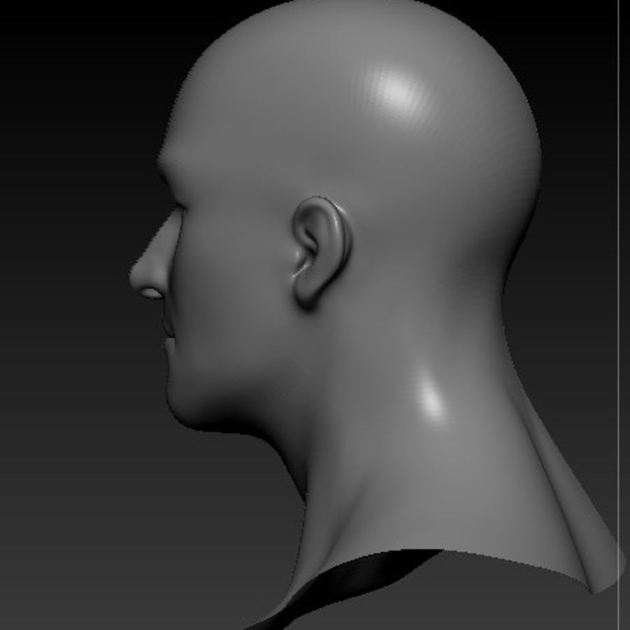 Male Head Bust royalty-free 3d model - Preview no. 4