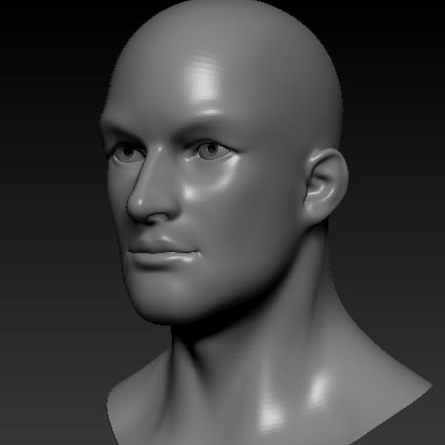 Male Head Bust royalty-free 3d model - Preview no. 1