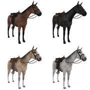 PACCHETTO Cavalli del selvaggio West 3d model