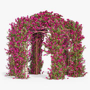 Pergola Bougainvillea With Flowers Ivy Hexagonal 3d model