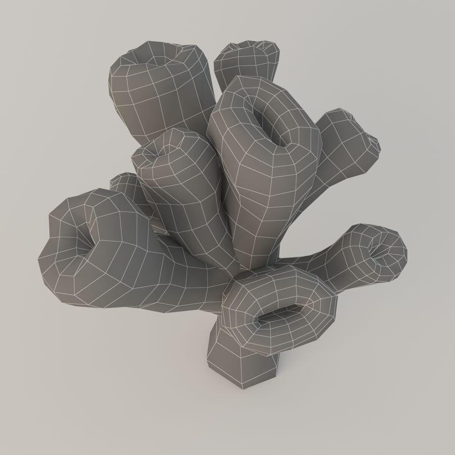 coral  Eusmilia royalty-free 3d model - Preview no. 5
