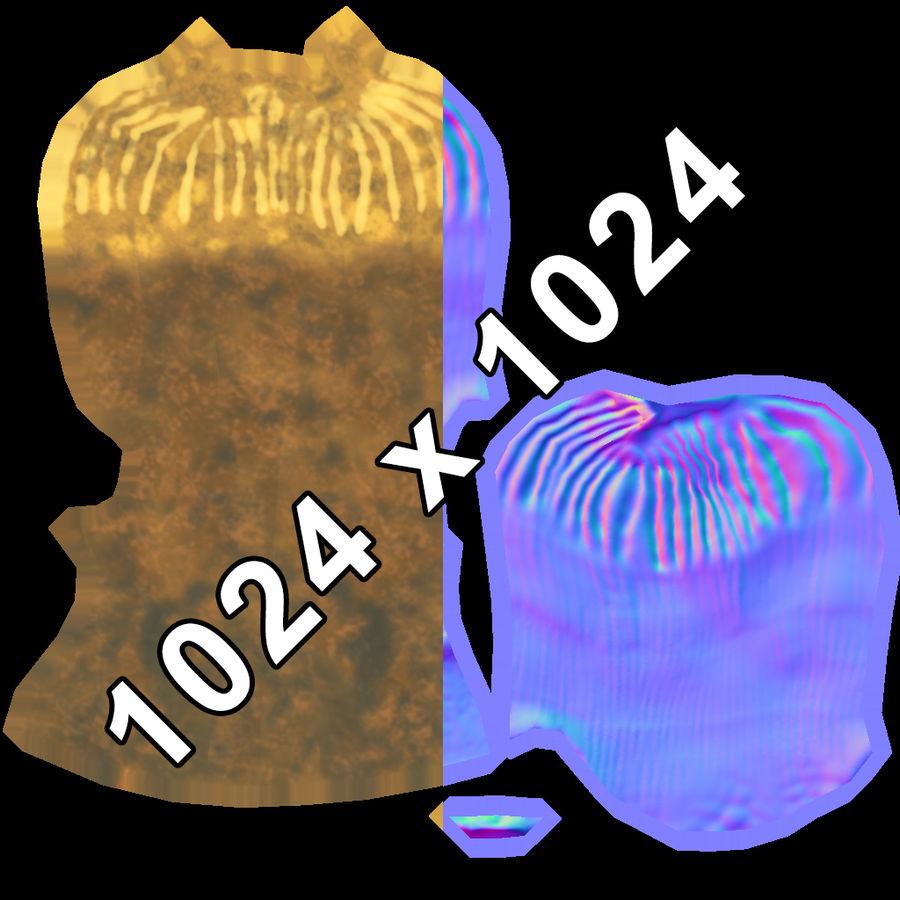 coral  Eusmilia royalty-free 3d model - Preview no. 7