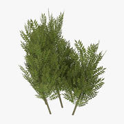 game ready shrub eleven 3d model
